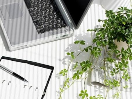 """Smart working: l'importanza delle piante """"in ufficio"""""""