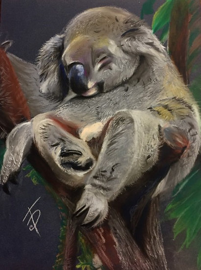 KOALA (MEMORIES OF AUSTRALIA) - Francesca Possati