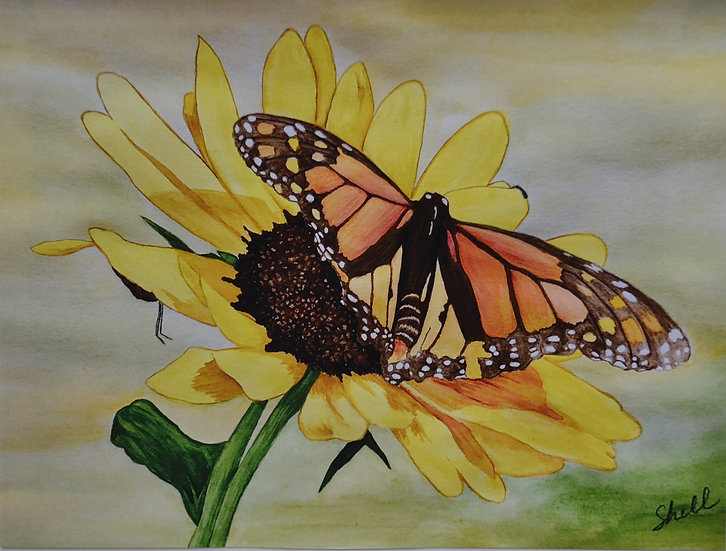 BUTTERFLY ON SUNFLOWER - Michelle Lee