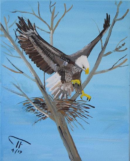 EAGLE TAKING FLIGHT - Trevor Fletcher