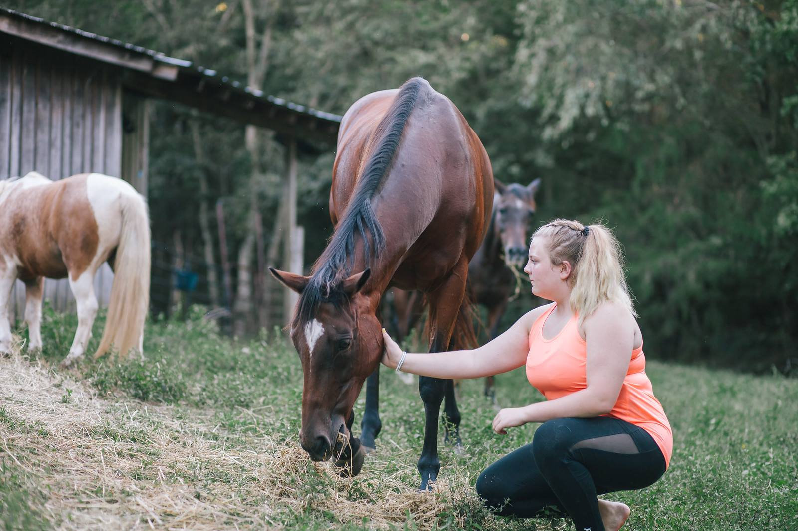 EMDR with Horses