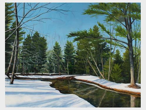 """Willett"" 11x14 original oil painting"