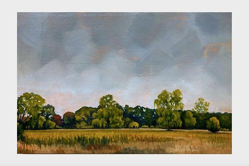 """""""Chamberlain"""" 12x18 original oil painting"""