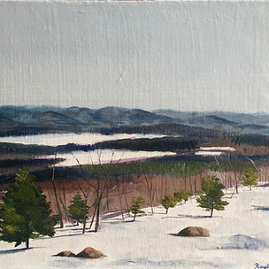 """Overlooking Pleasant Pond"""