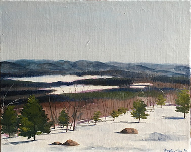 """Overlooking Pleasant Pond"""