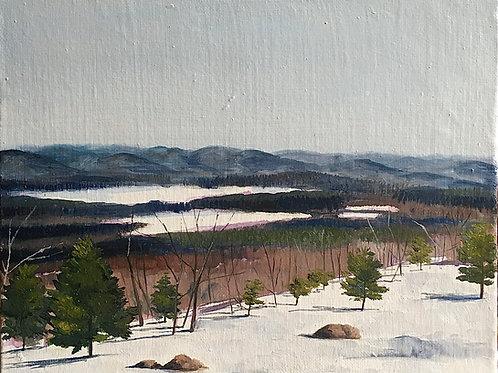 """Pleasant Pond"" 8x10 original oil painting"
