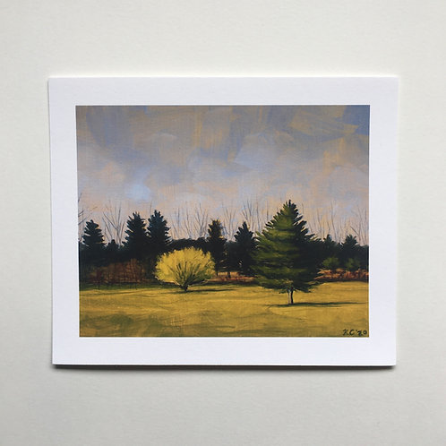 """""""Forsythia"""" 5x6 print"""