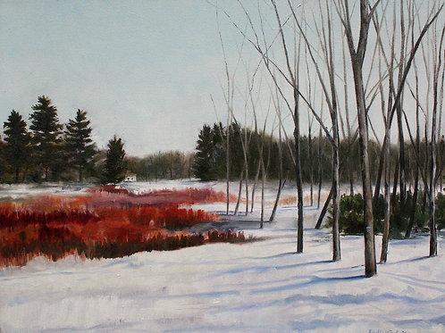 """Puckerbrush"" 14x18 original oil painting"