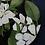 "Thumbnail: ""Crabapple Blossoms"" original oil painting"