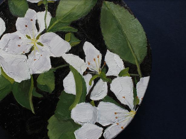 Crabapple blossoms study
