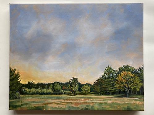 """Highland"" 16x20 original oil painting"