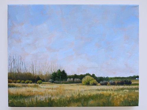 """Rankin"" 11x14 original oil painting"