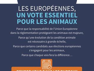 La condition animale au cœur des élections européennes - Communiqué de presse