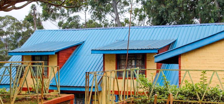 Mukaa blue roof.jpg