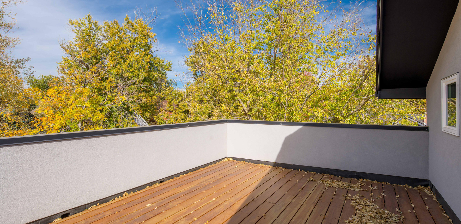 922 S Clarkson St-print-045-050-Rooftop