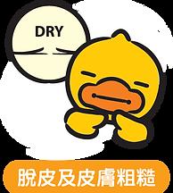 B. Duck Dry@4x.png