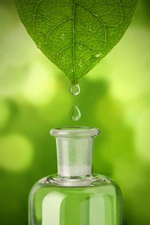 herbal-medicine-bottle.jpg