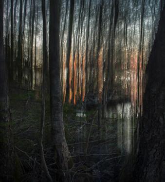 Kevät / Spring, 2016 Fotosec (pigmenttivedos akryylille /  Chromaluxe Metal Print,  110 cm x 100 cm  2/3 + 2 ap.