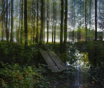 Lähde / Well, 2016 Fotosec (pigmenttivedos akryylille /  pigment print on acrylic)  110 x 130  cm 1/3 + 2 ap.