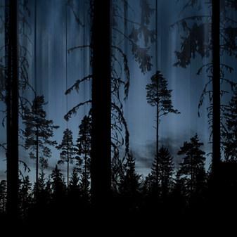 Sininen Metsä / Blue Forest 2016 Chromaluxe Metal Print, 40 cm x 40 cm 3/10