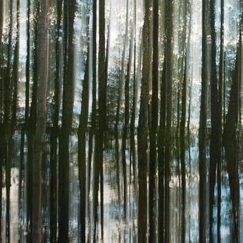 Kuvajainen / Reflection 2015 Chromaluxe Metal Print, 40 cm x 40 cm  2/10