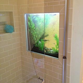 shower fish tank.jpg