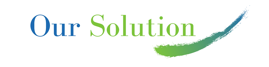 Our Solution-min.png