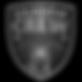 Shadow Crew Logo - Copy.png