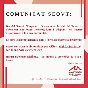 Des_del_Servei_d'Empresa_i_Ocupacióde