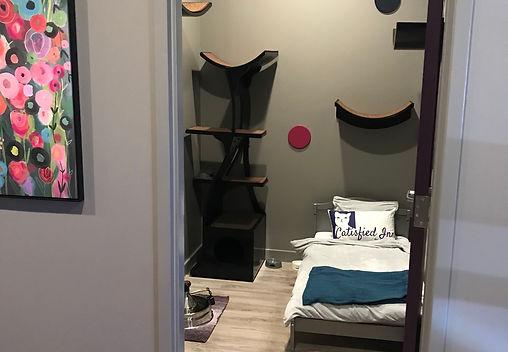 Suite View 1.jpg