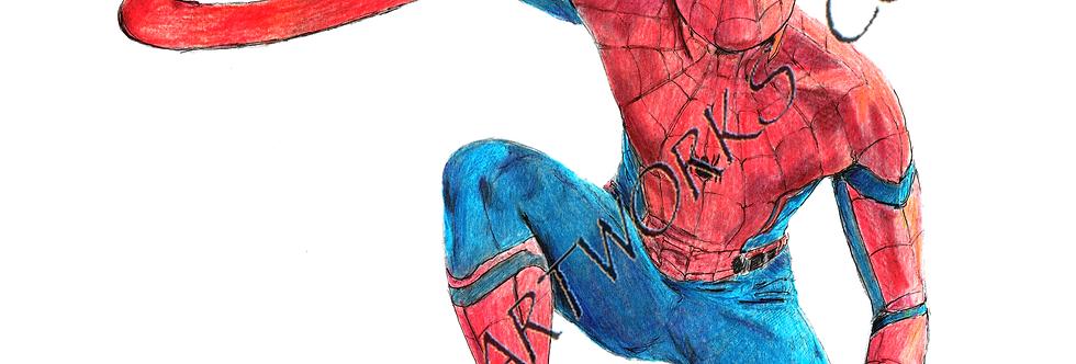 Spiderman  colour