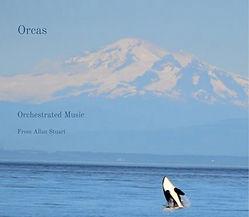 Orcas use 1.jpg