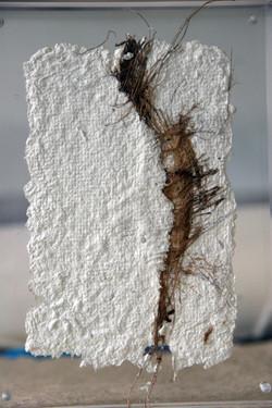 papier et fibres de coco