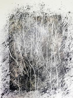 """""""Dans la forêt"""""""