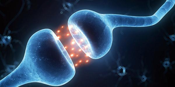 脳の神経線維のシナプスで神経伝達物質が飛び交っている映像 副腎疲労HP