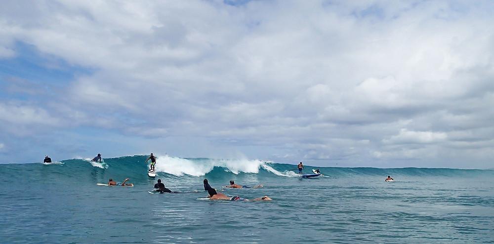ワイキキビーチでサーフィン三昧|副腎疲労HP