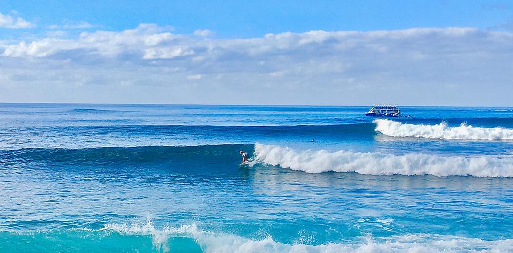 ロングボードを持って海を見ている男性|副腎疲労HP