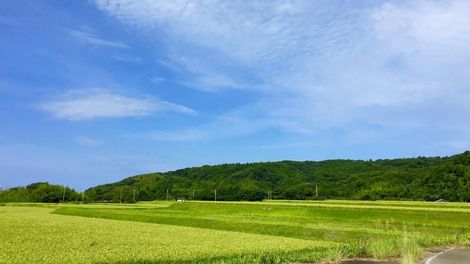 1歳の子供と夏休みに「佐渡島へ」