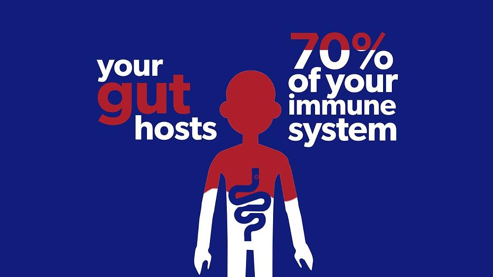 あなたの腸が70%の免疫システムを司っている|副腎疲労HP