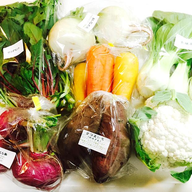 人参やカリフラワーなど無農薬の野菜|副腎疲労HP