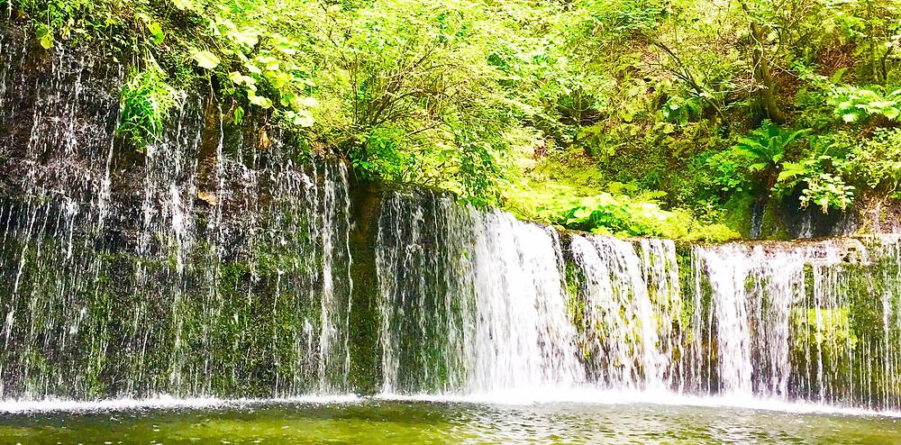 白糸の滝|副腎疲労HP