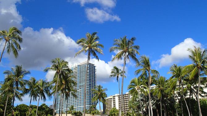 子連れで初めての海外旅行「ハワイ」へ