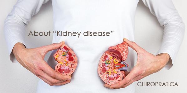 栄養のセミナー|お知らせ 4月1日【腎臓病について】