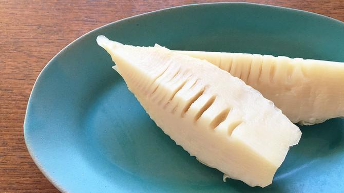 旬のものを食べよう!|食物繊維がたっぷり?!採れたては柔らか〜な「タケノコ」