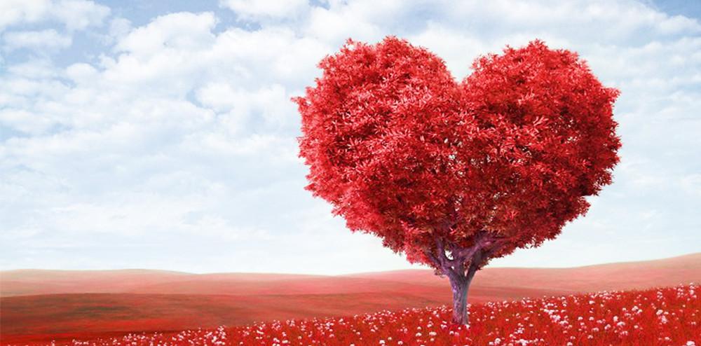 赤いハートの形をした木|副腎疲労HP