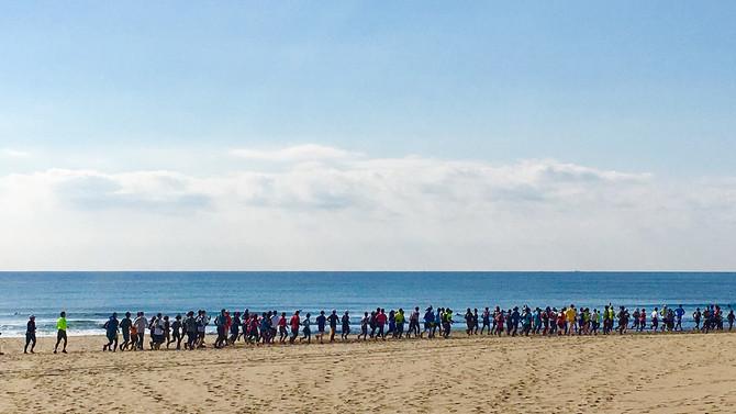 千葉の海岸で人の大群発見!