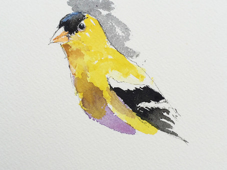 The Goldfinches