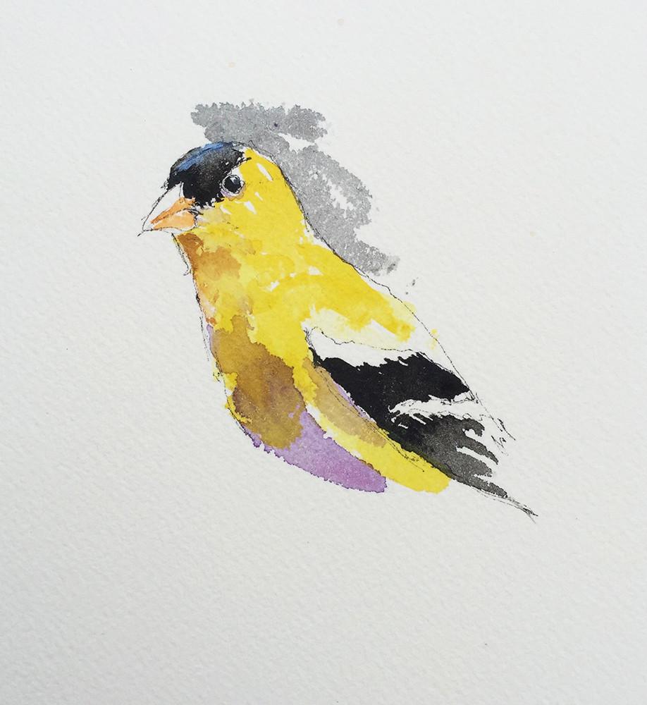 Goldfinch watercolor sketch