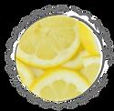 Zitronen Stempel.png