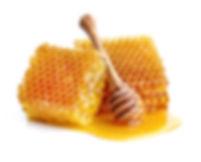 Köstlicher Honig aus Köln